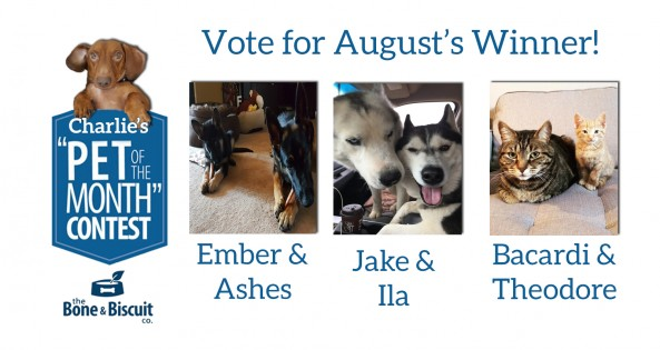 August Nominees