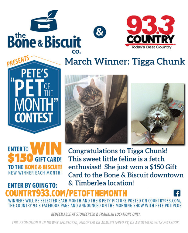 MARCH WINNER-TIGGA CHUNK01