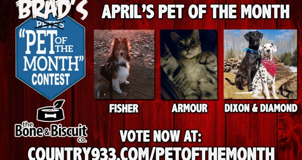 VOTE NOW-APRIL